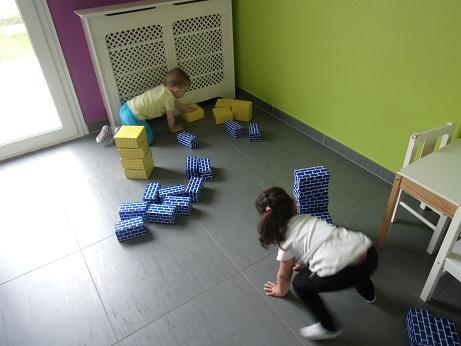 Briques carton